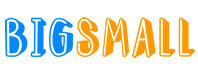 BigSmall Logo